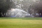Lawn watering in the Park. — Stock Photo