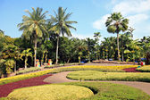 Parks in Thailand. — Stock Photo