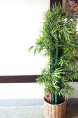 Artificial bamboo tree. — Stock Photo
