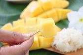Mango flesh yellow in hand and sticky rice. — Stock Photo