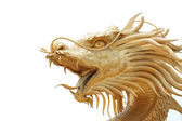 Head Golden dragon statue. — Stock Photo
