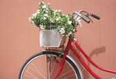 Red bicycle and pink flowers. — Stock Photo