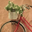 Bicycle of surface paper box. — Stock Photo #48013153