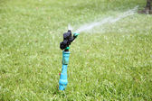 Sprinkler is working. — Stock Photo