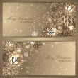 Set of elegant christmas banners with snowflakes — Stock Vector