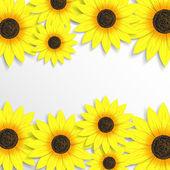 Kreativní pozadí se slunečnicemi — Stock vektor
