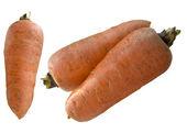 新鲜胡萝卜. — 图库照片