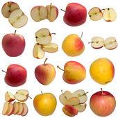 Autumn Apples. — Stock Photo