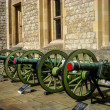 Green cannon — Stock Photo #22880286