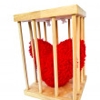 Heart in wood cage — Stock Photo #23103592