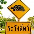 Stock Photo: Sign beware turtle