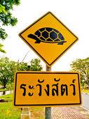 Sign beware turtle — Stock Photo