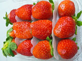 Strawberry in packaging — Stockfoto