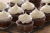 Babeczki czekoladowe z lukier biały ser — Zdjęcie stockowe