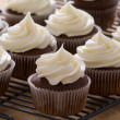 Chocolate gourmet cupcakes with cream cheese frosting - Stockfoto
