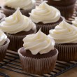 Chocolate gourmet cupcakes with cream cheese frosting - Stok fotoğraf