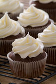 Chocolate gourmet cupcakes with cream cheese frosting — Stockfoto