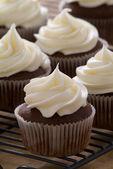 巧克力美味纸杯蛋糕有芝士奶油糖霜 — 图库照片