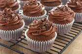 Deliciosos cupcakes de chocolate con glaseado de chocolate — Foto de Stock