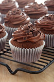 Delicious chocolate cupcakes with chocolate frosting — Photo
