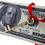 Money key 2 — Stock Photo #24189761