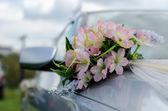 автомобили для свадьбы — Стоковое фото