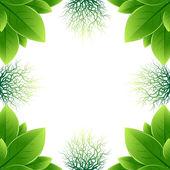 рама изготовлена из зеленых листьев и корней — Cтоковый вектор