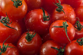 Сherry tomatoes — Stockfoto