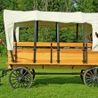 Old Fashioned Horse Drawn Covered Wagon — Stock Photo #43325067