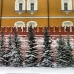 Kremlin — Stock Photo #22609273