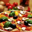Pizzand some ingredients — Stok Fotoğraf #27609053