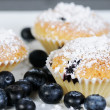 Three sweet blueberry muffins with powdered sugar on slate — Stock fotografie