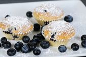 Three blueberry muffins with powdered sugar on slate — Stock Photo
