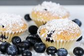 Three sweet blueberry muffins with powdered sugar on slate — Stok fotoğraf