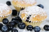 Three soft blueberry muffins with powdered sugar on slate — Stock Photo