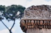 Immagine di roma — Foto Stock