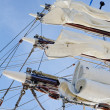 Stock Photo: White Sails
