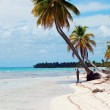 Punta Cana beach — Stock Photo