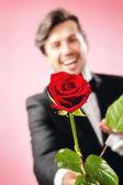 Muž miluje růže — Stock fotografie