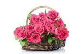 čerstvé červené růže v proutí na bílém pozadí — Stock fotografie