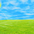 Blue sky and green grass — Stok fotoğraf