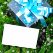 Gift box with blue ribbon on pine branches - Stockfoto