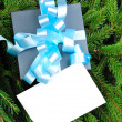 Gift box with blue ribbon on pine branches — Stock Photo