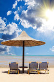 Tropical beach with empty loungers — Stock Photo