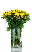Boeket van chrysant bloemen in de vaas geïsoleerd op witte achtergrond — Stockfoto