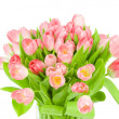 Pink tulips in the vase isolated on white background — Stock Photo