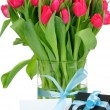 Tulips and gift box with blue ribbon isolated on white background — Stock Photo