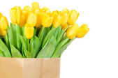 Tulips in the paper bag — Stock Photo