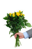 Man hand holding bunch of yellow roses isolated on white background — Stock Photo