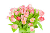 Pink tulips in the vase isolated on white background — Stok fotoğraf